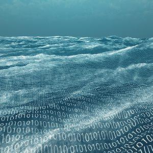data wave x 300