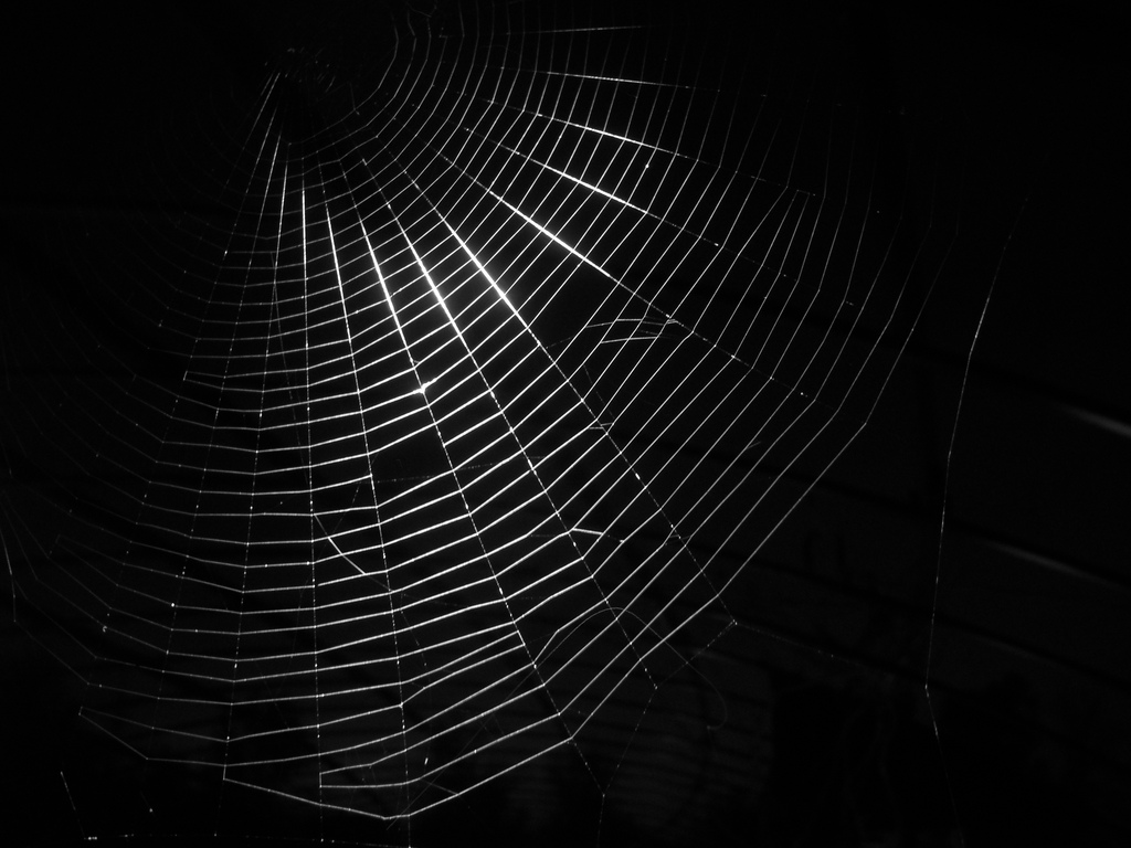 Resecurity To Fully Index The Dark Web By 2020 Dataversity