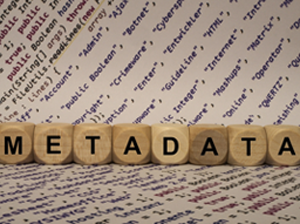 metadata management