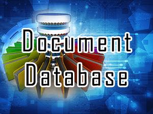 Document Database