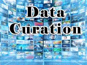 Data Curation