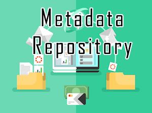 Metadata Repository