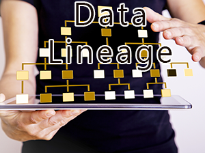 Data Lineage