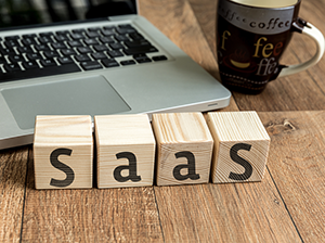 Software-as-a-Service (SaaS)